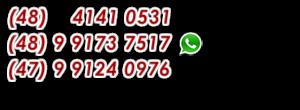 WhatsApp Fone